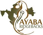 Ayaba Ridgeback