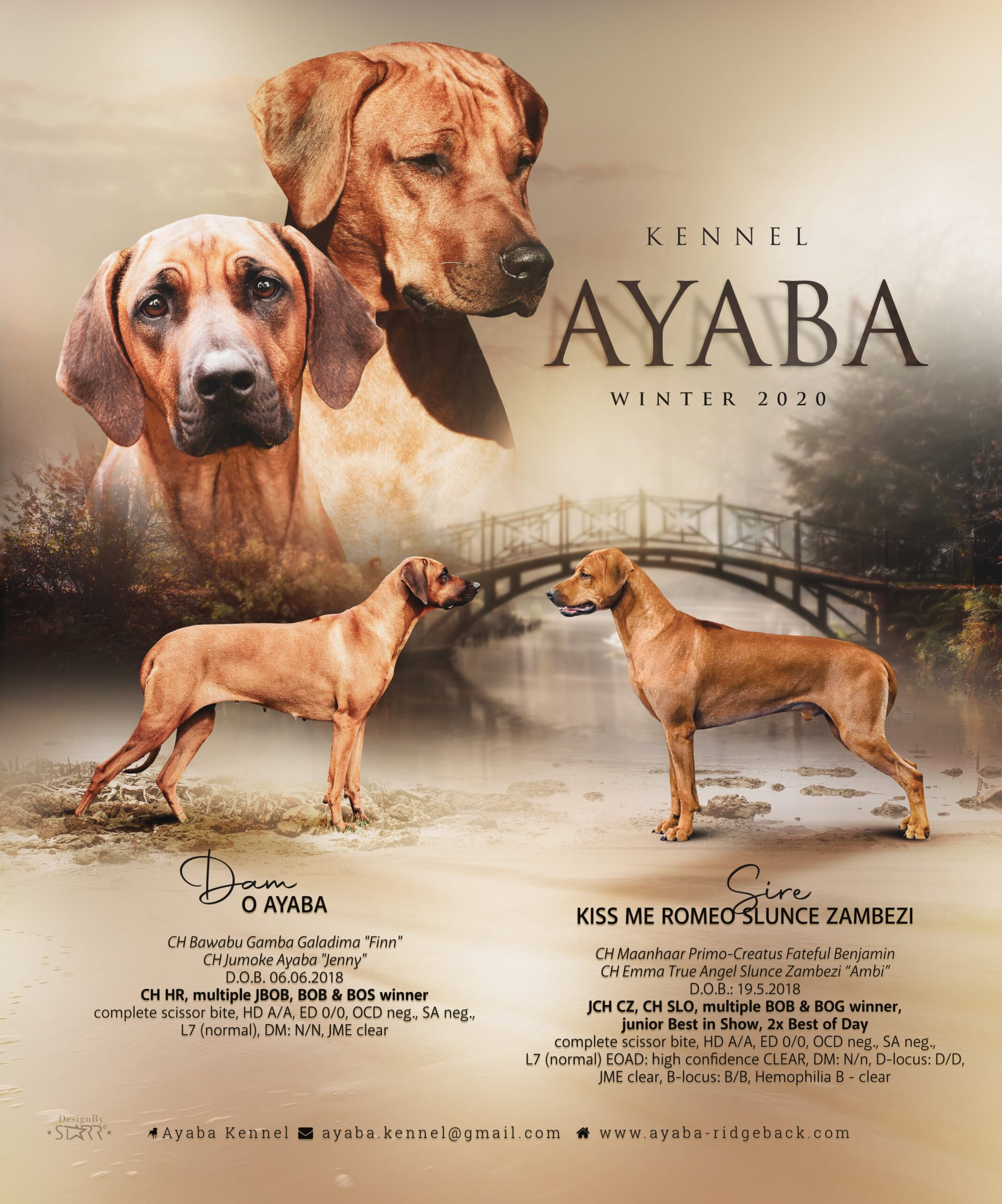 Ayaba kennel litter P puppies expected